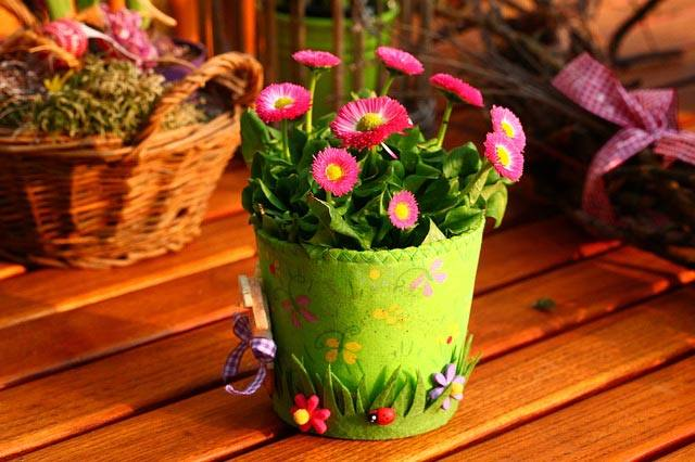 flowers-in-a-pot