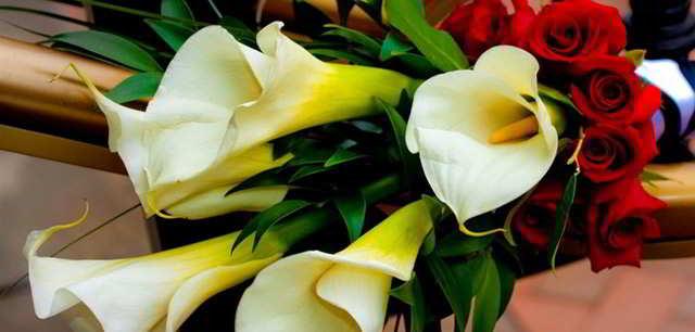cvety-muzhchine