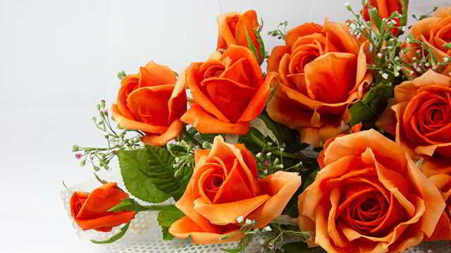 oranzhevye-rozy