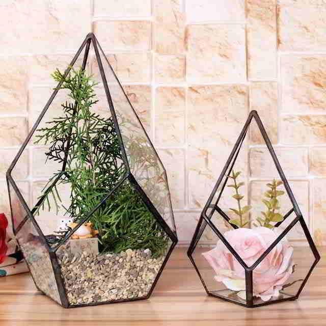 geometricheskij-terrarium