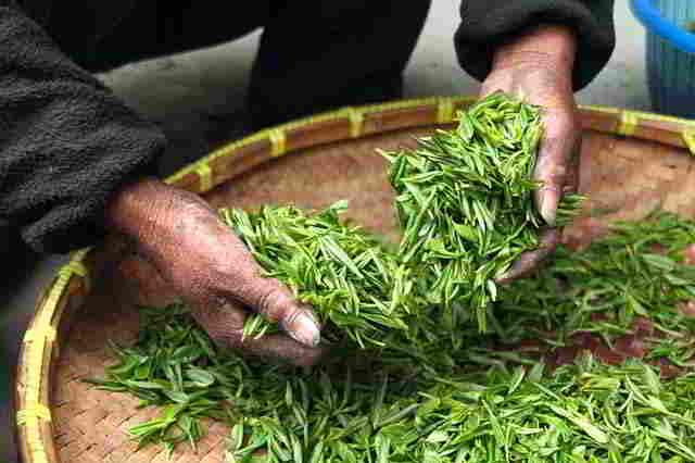 фермерский чай