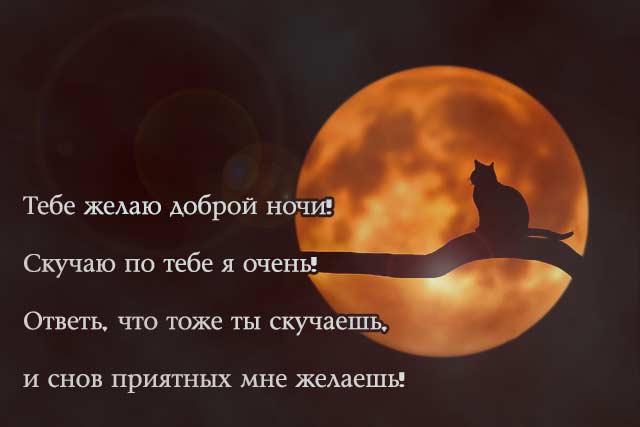 спокойной ночи женщине