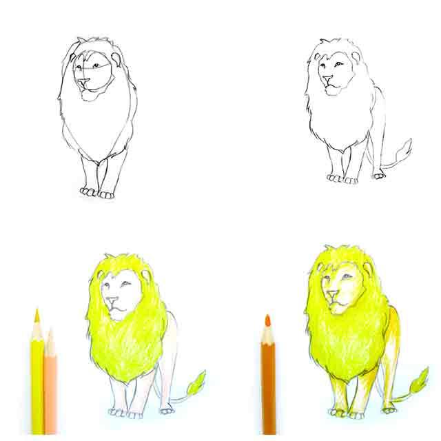 Животные картинки для срисовки карандашом для начинающих 13