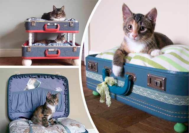 лежак для кошки из чемодана