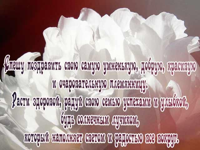 Поздравления с рождением племянницы на татарском языке