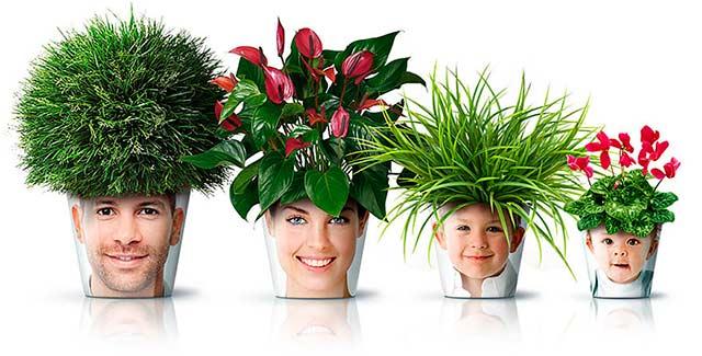 горшок для цветов с фото