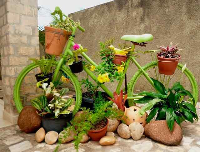 подарок для сада и огорода