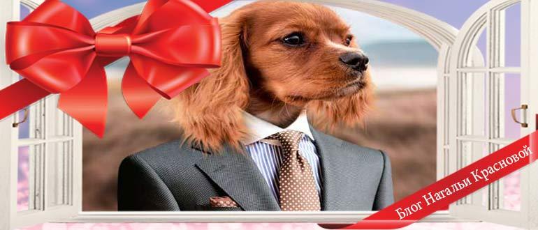 Собака своими руками: мастер-класс