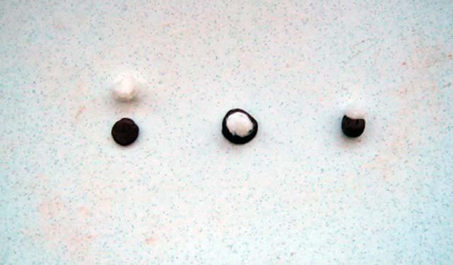 почки для вербы из пластилина