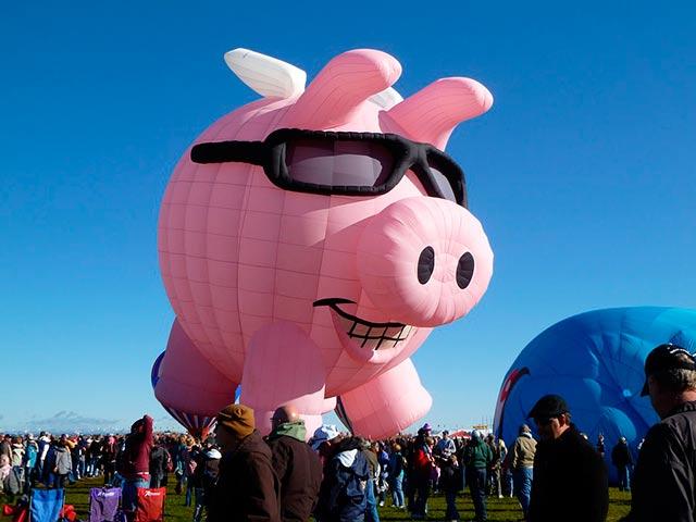 воздушная свинья фото