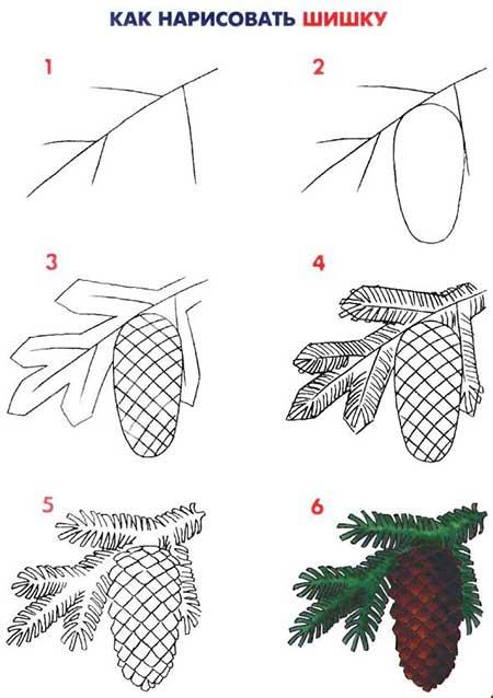 рисунок новогодней ветки