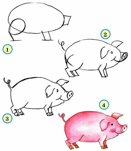 рисунок свиньи