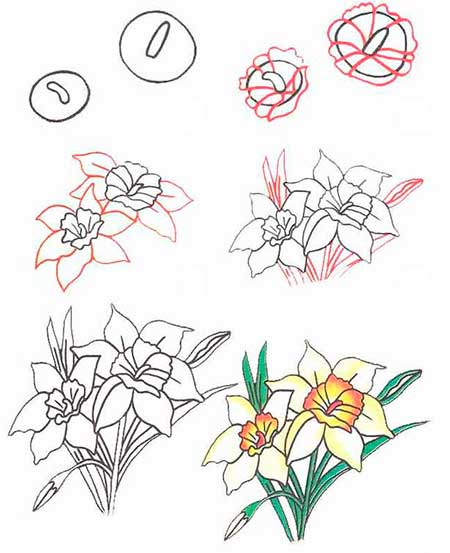пошаговое рисование цветка