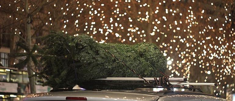 елка на машине