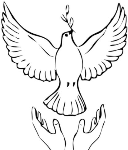 птица с руками
