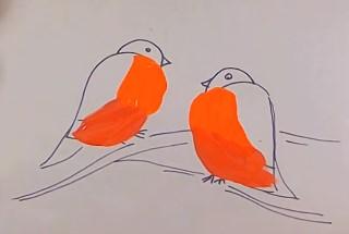 алые грудки птичек