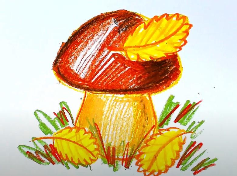гриб карандашом