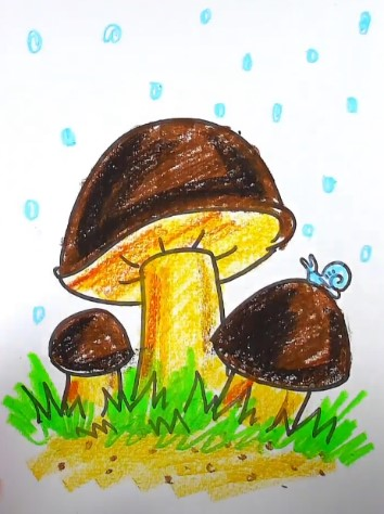 белые грибы карандашом
