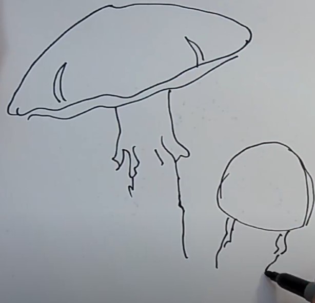 намечаем шляпку мухомора