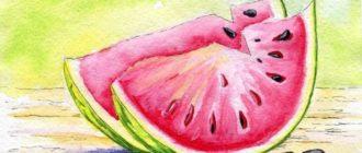 рисунок арбуза