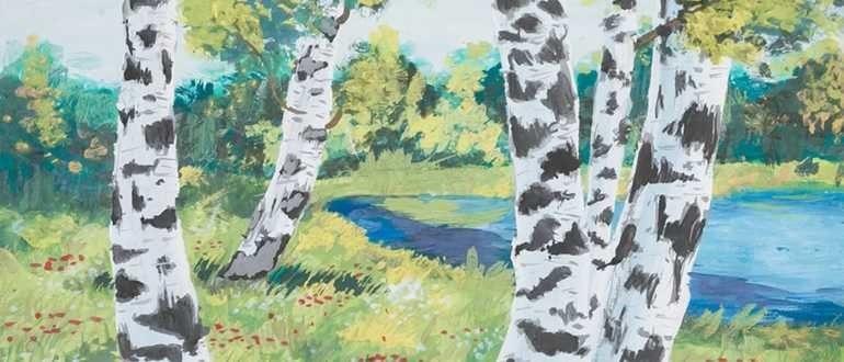 березка в лесу рисунок