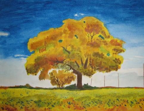 дуб в поле