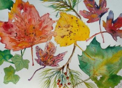 осенние листья рисунок карандашом